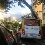 Busdoor AGORA JUNTAS